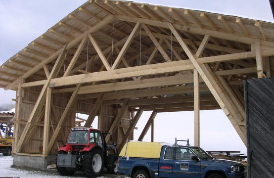 Konstuktiver Holzbau