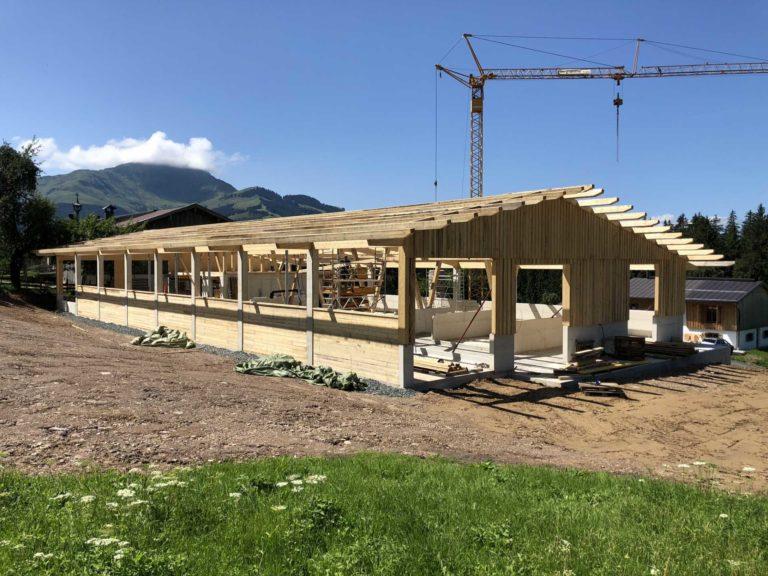 Stall in St. Johann in Tirol